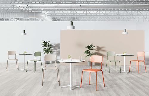 5 plantas para refrescar tu oficina